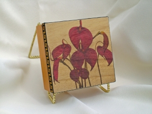 Masdevallia orchid box / Heat transfer