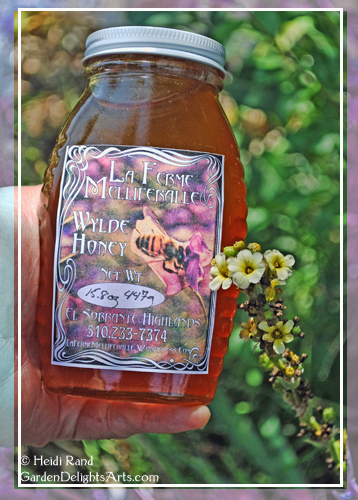 Honey bottle with label